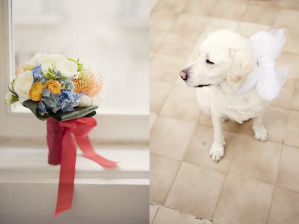 Букет невесты и собака на свадьбе