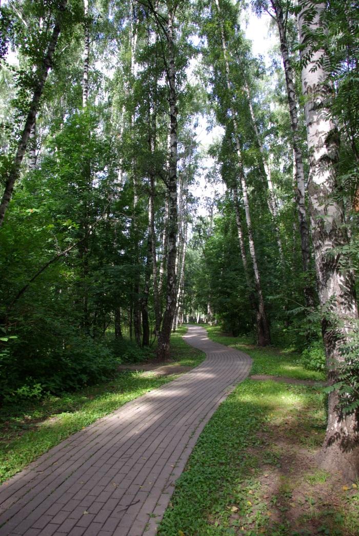 Медведковский парк