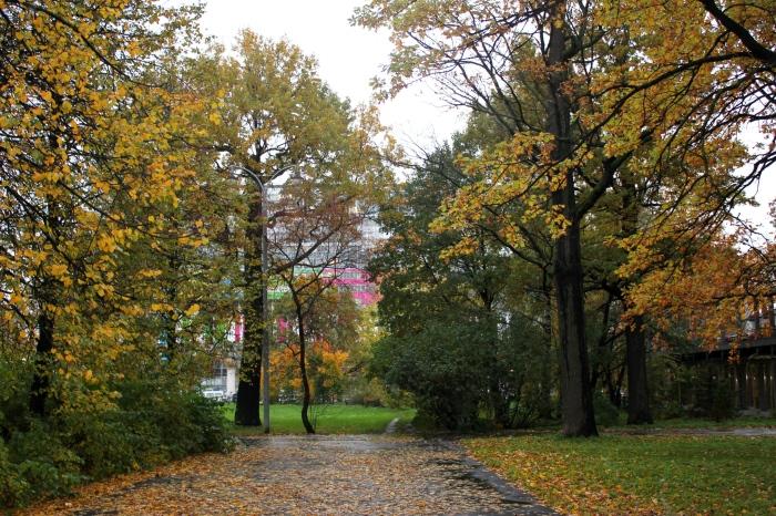 Парк Дубовая роща