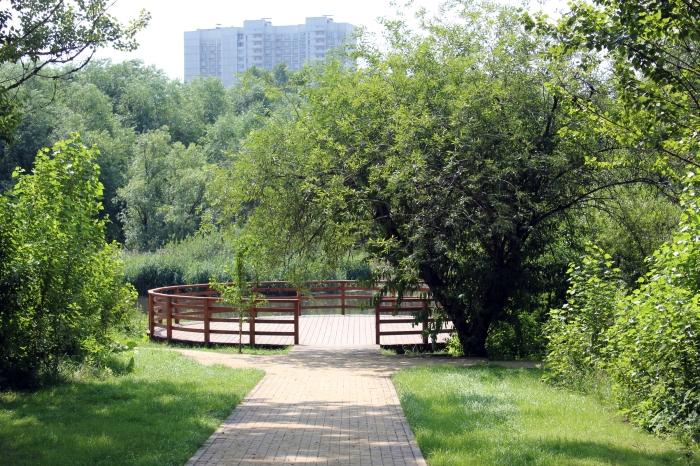 Парк по Олонецкому проезду