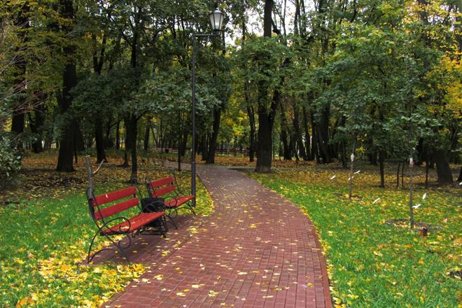 Парк усадьбы Богородицкое