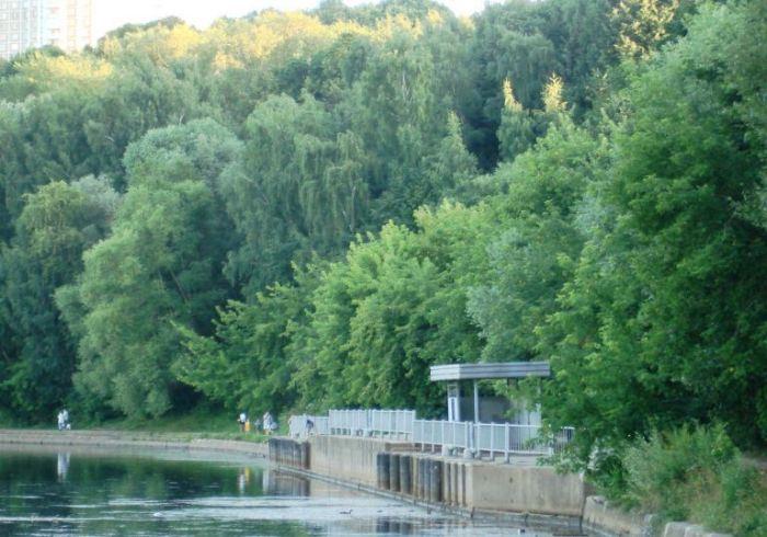 Суворовский парк