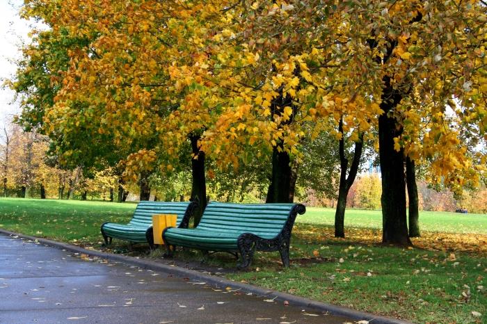 Парк в Садовниках