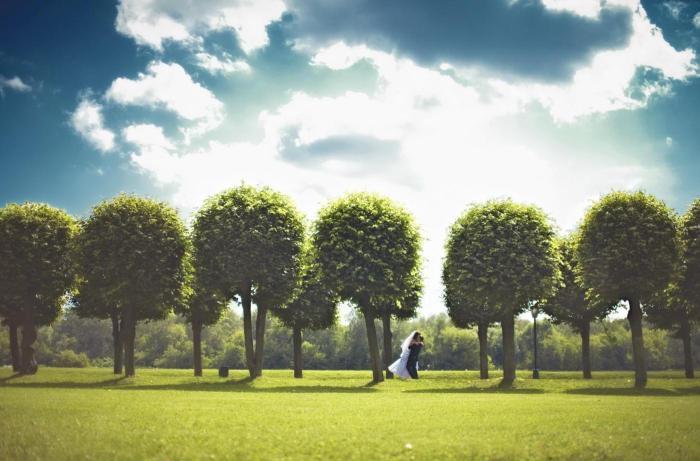 Парки для свадебной прогулки и фотосесии